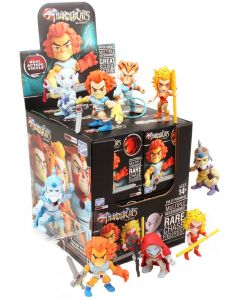 THUNDERCATS WAVE 1 ACTION VINYLS PDQ CASE